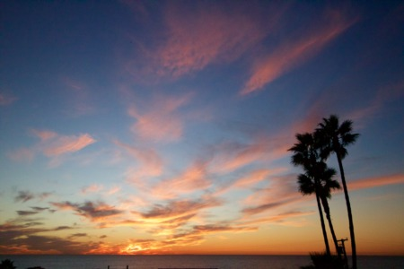 Homes For Sale In Encinitas: 3 Expectations When Working With A Top Realtor
